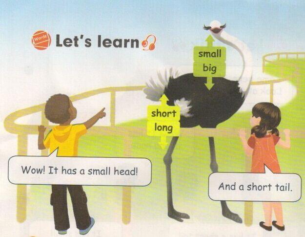 小学三年级英语 人教PEP版 下册 Unit 3 At the zoo B图片