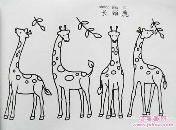 如何画长颈鹿 长颈鹿简笔画步骤图